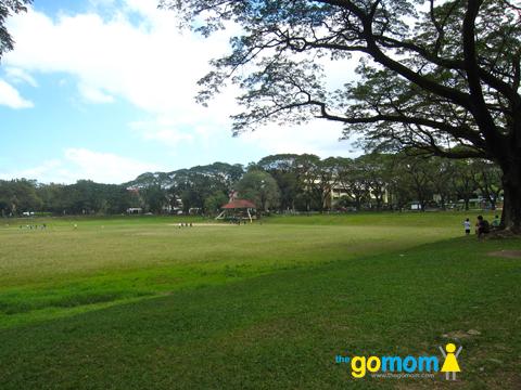 UP Diliman Sunken Garden