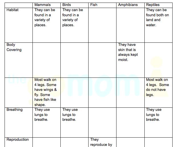 animal worksheet new 546 animal classification worksheet vertebrates. Black Bedroom Furniture Sets. Home Design Ideas
