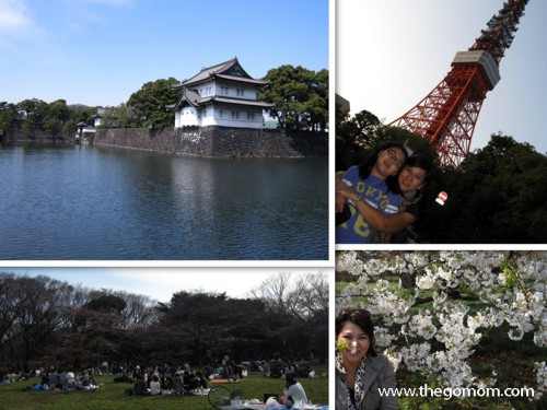 Upper left is Imperial Palace, Upper right is Tokyo Tower, Lower Left is Yoyogi Park,  Lower right is Cherry Blossoms inside Imperial Palace