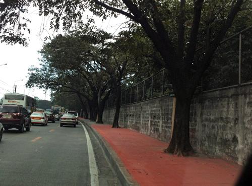 red sidewalk of edsa