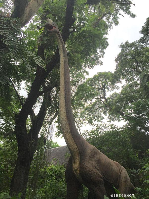 Gentle and Gigantic Sauropod